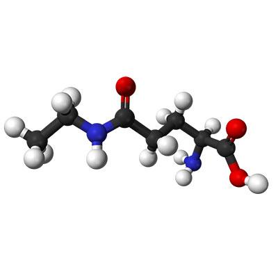 L-Theanine 3D Model