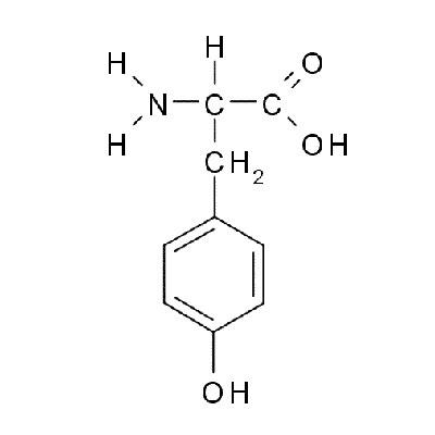 Caffeine L-Tyrosine Supplements