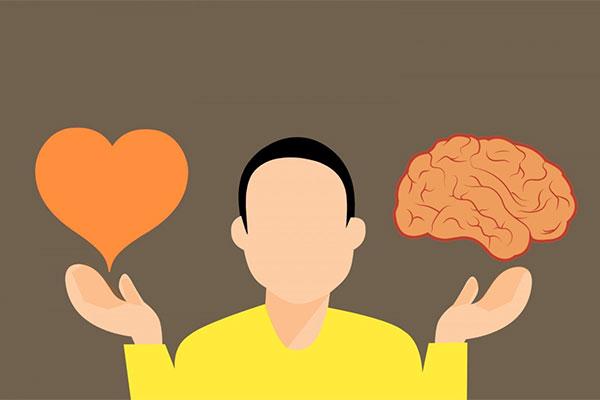 Prebiotics for brain and cognition